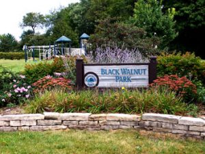 black-walnut-park1